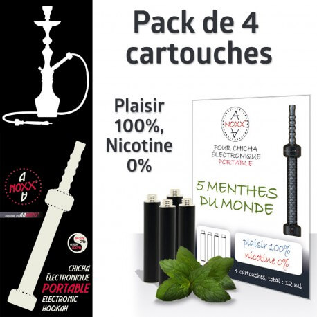 Capsules parfum 5 Menthes du Monde pour Chicha AANOXX®
